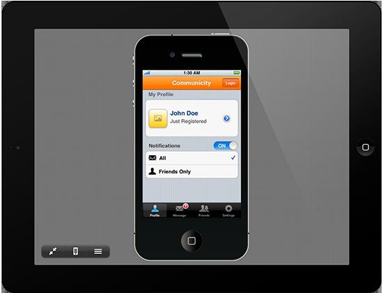 iPad con Interface 2