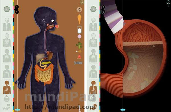 El Cuerpo Humano es la aplicación de la semana de Apple